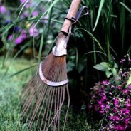 Eco-Friendly Garden Tools